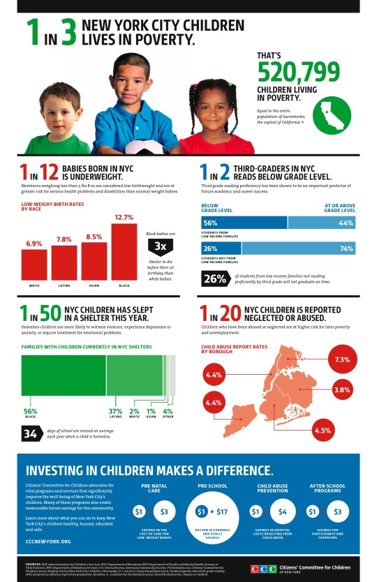 Public School Infographic