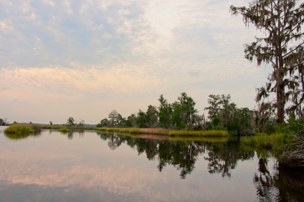 A picture of the Combahee River from the realtor Plantation Services which sells property along the river.